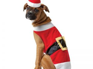 santa-pet-dog-costume